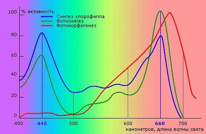 660 нанометров длина световой волны ускоряющая рост растений